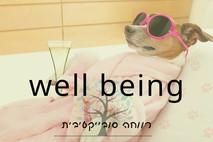 WELL-BEING או איך להיות מאושר?