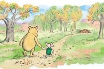 קטע קצר מפו הדוב