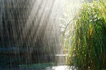 גשם של אגדות