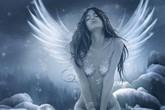 פני מלאך