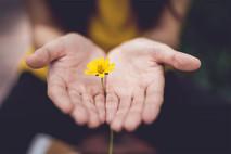 נכות נפשית מביטוח לאומי – מה קרה כשהחלטתי לקבל עזרה