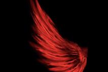 שאגה אדומה וכנף עצומה