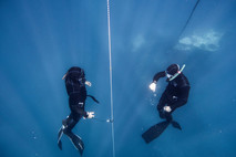 Relish Exhilaration by Freediving in Israel With Freedive Eilat!