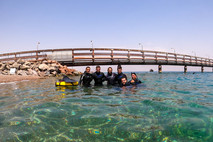 Does Freediving in Israel Tickle Your Fancy?!