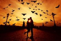 אהבה היא כל מה שתרצי/ה