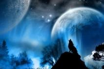 הצייד והזאבה