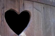 לב אחד