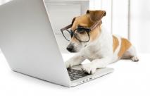 מחפשים באינטרנט פורץ כספות מקצועי?