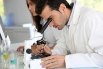 ה-IVF בישראל הוא המתקדם בעולם