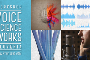 Delavnica Voice Science Works
