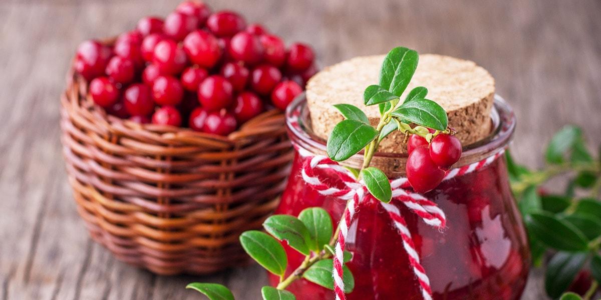 Arándanos, las pequeñas dosis de salud