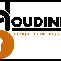 Houdini's Escape Room Experience logo