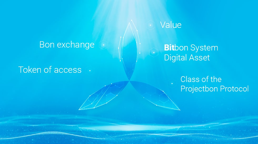 Adapting the Bitbon System to Standards of International Law