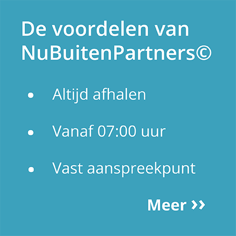 Nubuiten Partners