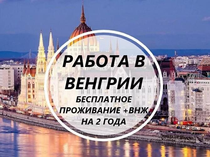Срочный набор! Везем бесплатно c Украины по био! Работа в Венгрии! 700-950 долларов в месяц Мукачево - зображення 1