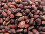 Продаём кедровый орех в скорлупе Харків