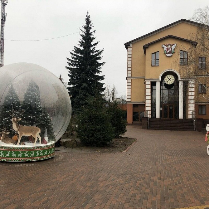 Доставьте удовольствие покупателям с надувным Чудо шаром Київ - зображення 6