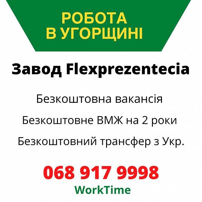 Робота в Угорщині/БЕЗКОШТОВНА вакансія/документи/трансфер Івано-Франківськ - зображення 1