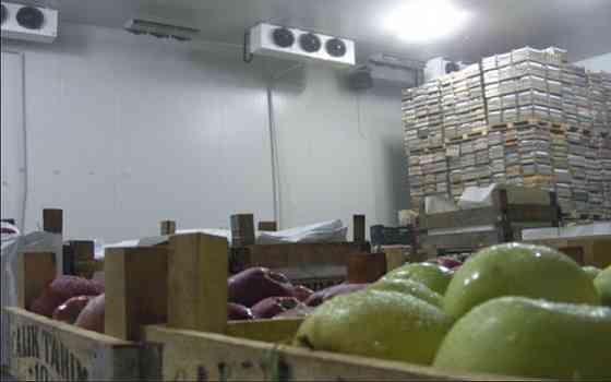 Холодильний склад для охлаждения хранения яблок 0 + 2 С Черкасы Черкаси