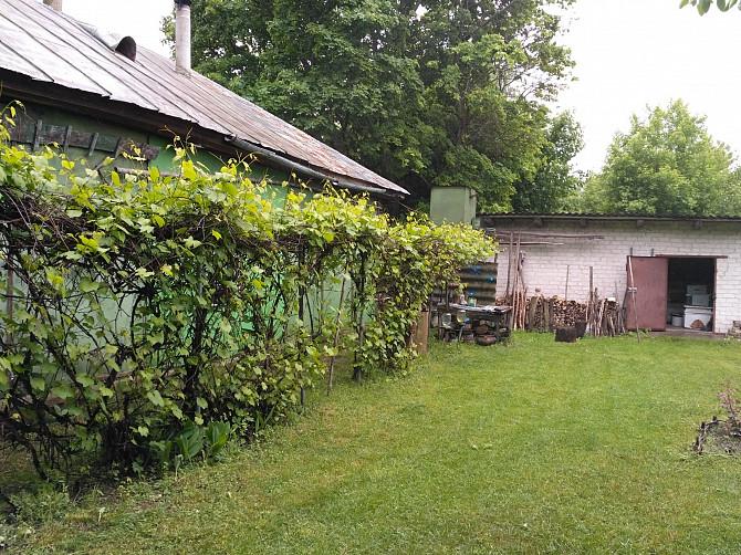Продается дом в с.Воронцово, Кролевецкий район. Кролевець - зображення 3