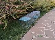 Живоловушка для кота. Метровая котоловка с педалью. Купить живоловушку для кошек. Кошколовка. Видео Київ