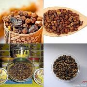 Перга (бджолиний хліб) Дніпро
