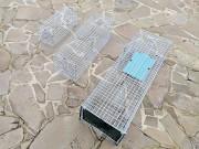 Котоловка. Живоловка 0, 7 метра. Клетка ловушка эконом класса. Котоловушка Київ