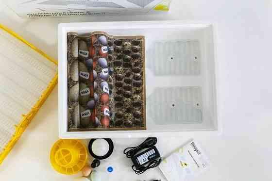 Інкубатор Теплуша на 70 яєць, вологомір, терморегулятор, механічний переворот, живлення від аккумул Київ