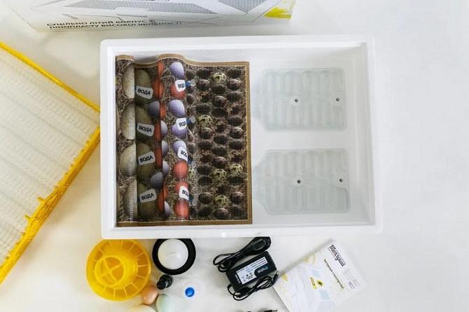 Інкубатор Теплуша на 70 яєць, вологомір, терморегулятор, механічний переворот, живлення від аккумул Київ - зображення 3