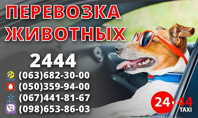 Заказ такси по городу , межгороду , в аэропорт и на вокзал. Драйвер , техпомощь и много других услуг Київ - зображення 6