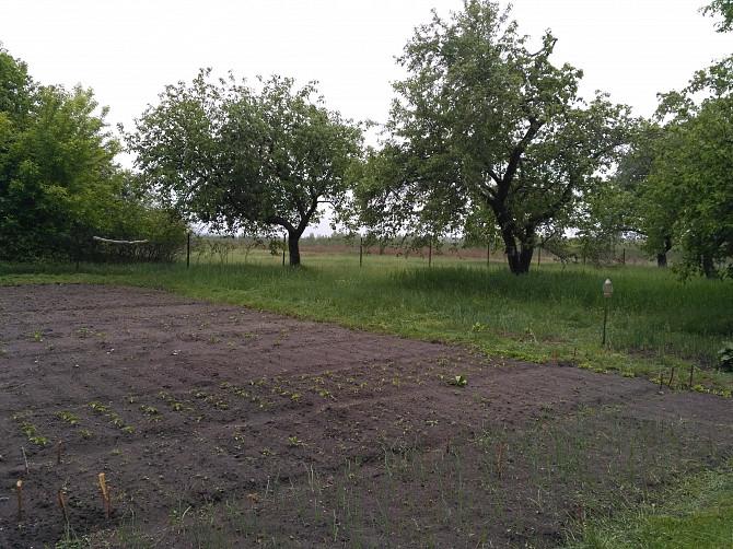 Продается дом в с.Воронцово, Кролевецкий район. Кролевець - зображення 5