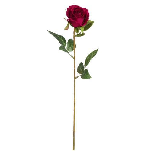 FLORISTA Růže - červená