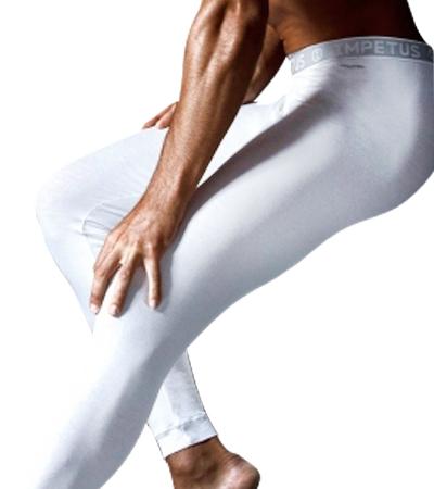 Kalhoty funkční prádlo Impetus (1281898)
