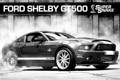Posters Plakát, Obraz - Ford Shelby GT500 - supersnake, (91,5 x 61 cm)