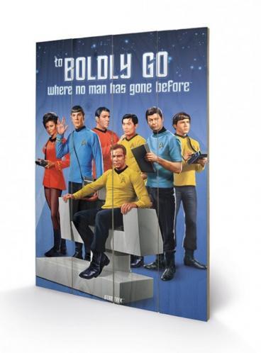 Posters Dřevěný obraz Star Trek - Boldly Go, (40 x 59 cm)