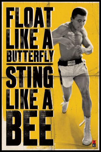 Posters Plakát, Obraz - Muhammad Ali - vznášet se jako motýl, (61 x 91,5 cm)