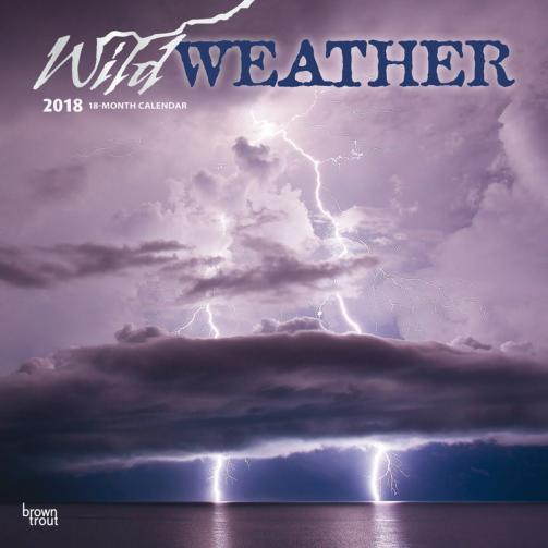 Kalendář 2018 Wild Weather