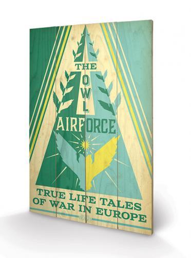 Posters Dřevěný obraz Fantastic Beasts - Owl Airforce, (40 x 59 cm)