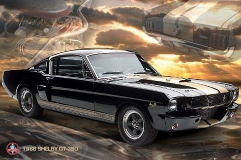 Posters Plakát, Obraz - Ford Shelby - Mustang 66 gt350, (91,5 x 61 cm)