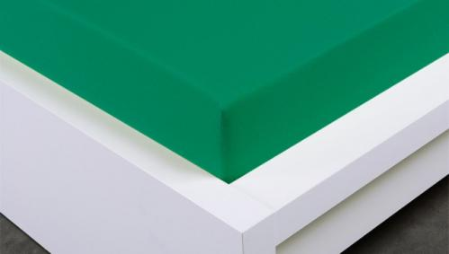 XPOSE ® Jersey prostěradlo Exclusive dvoulůžko - zelenkavá 200x220 cm