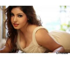 Call Girls In Faridabad Sector 24 Call Himansu +919911065777 In Call Out Call Service 24/7