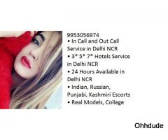 SHOT 1500 NIGHT 6000 delhi  Call Girls in Defence Colony  +919953056974