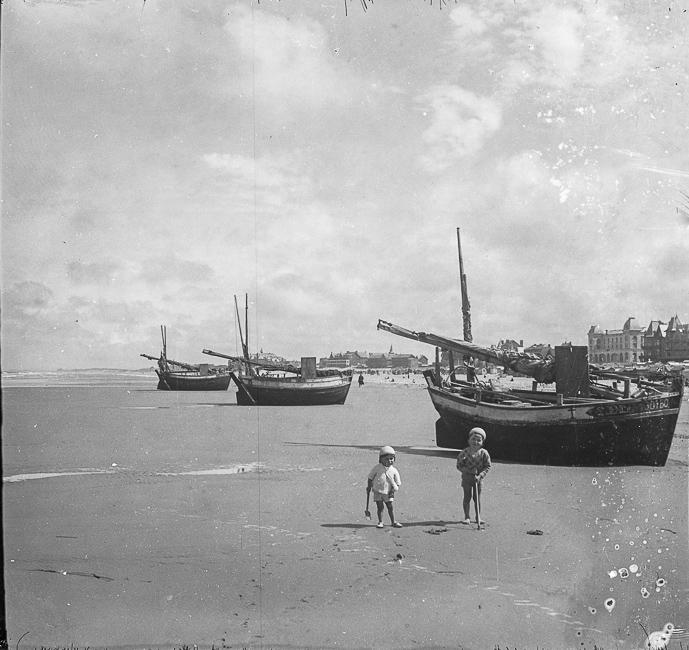 Des flobarts échoués sur la plage de Berck