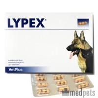 Vetplus Lypex
