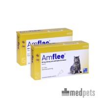 Amflee Spot-on Katze