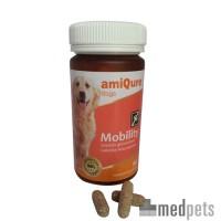 amiQure - Mobility