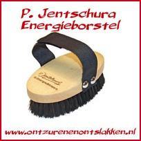 Energieborstel P Jentschura bestellen
