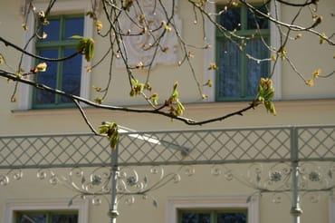 Villa Kaiserhof im Frühling