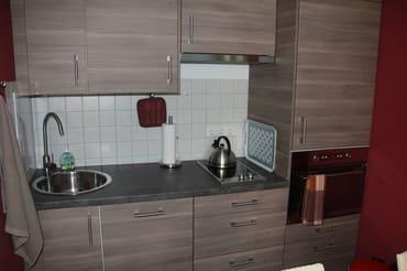 Geschirrspülmaschine, Toaster, 2 Plattenherd, Backofen und integrierte Mikrowelle