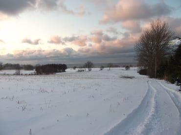 Winter - Blick auf die Ostsee